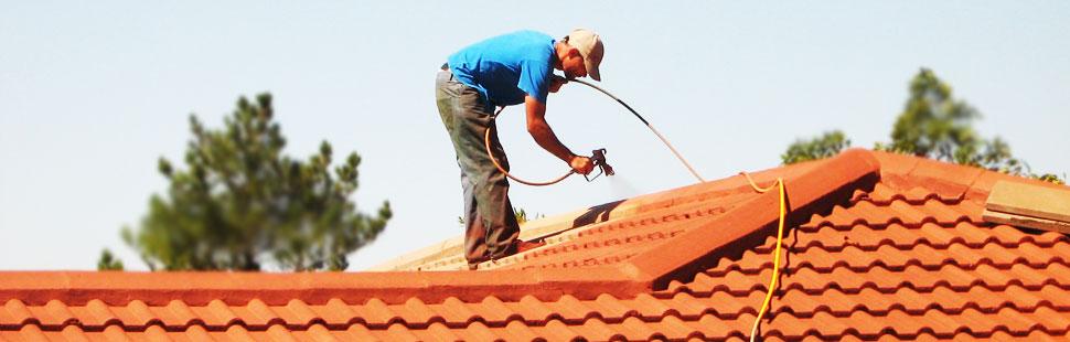 Roof Spray Painting Cape Town   Habitat Renovations