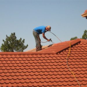 Roof Cleaning Services Cape Town